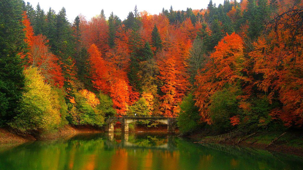 España de mil colores
